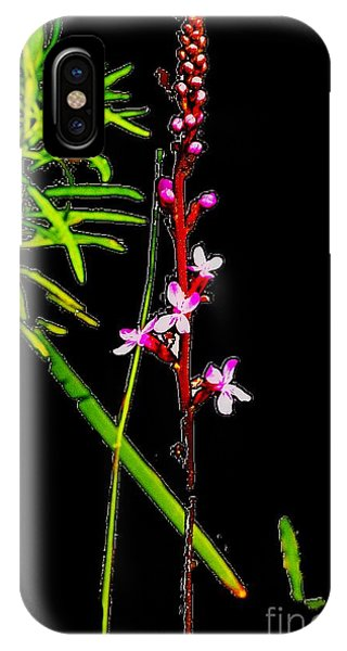 iPhone Case - Bamboo And Flowers by Blair Stuart
