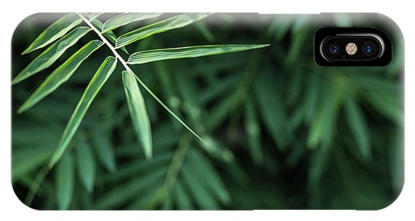 Bamboo Leaves Background IPhone Case