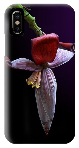 Banana Flower Portrait IPhone Case
