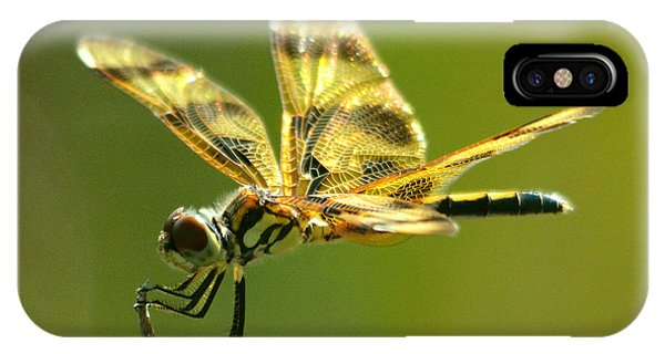 Banded Pennant, Female IPhone Case