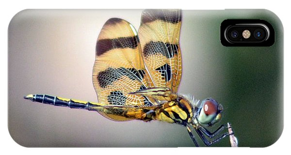 Banded Pennant IPhone Case