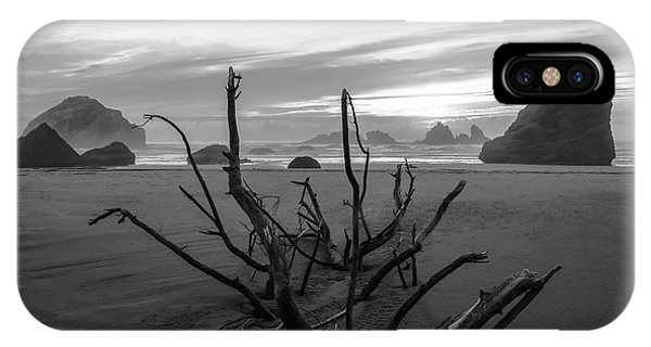 Bandon Beach Tree IPhone Case