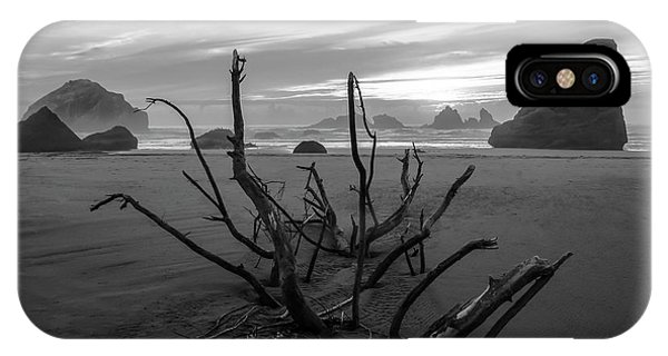 Bandon Beach Tree IPhone Case