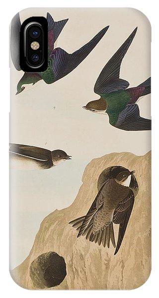 Wild Violet iPhone Case - Bank Swallows by John James Audubon