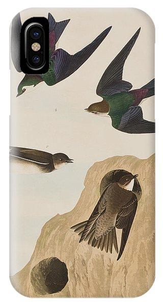 Swallow iPhone Case - Bank Swallows by John James Audubon