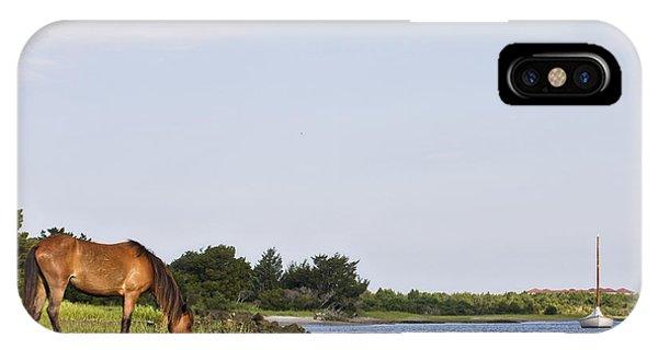 Banker Horse Along Taylors Creek IPhone Case