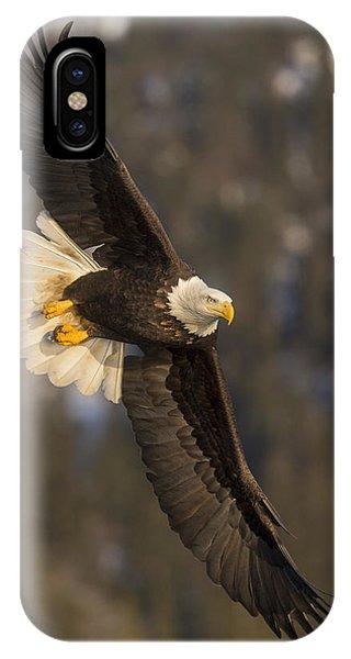 Banking Bald Eagle IPhone Case