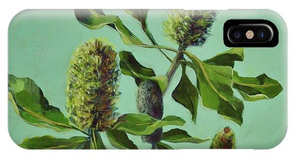 Banksias Australian Flora Painting IPhone Case