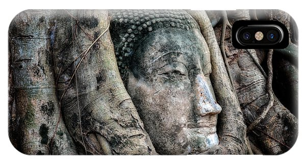 Banyan Tree Buddha IPhone Case