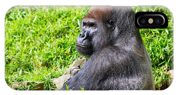 Baraka - Western Lowalnd Silverback Gorilla IPhone Case
