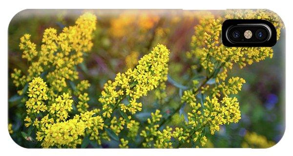 The Nature Center iPhone Case - Barbarea Vulgaris - Yellow Rocket  Garden Flower by Jennifer Rondinelli Reilly - Fine Art Photography