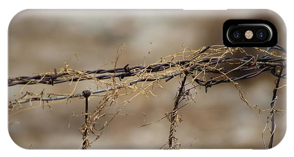 Barbed Wire Entwined With Dried Vine In Autumn IPhone Case