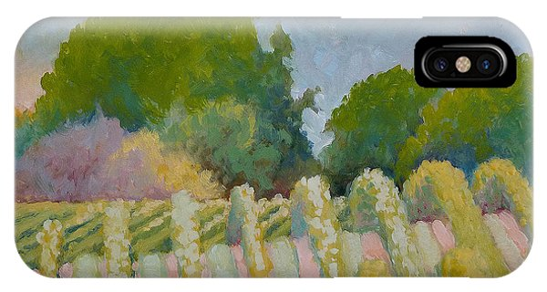 Barboursville Vineyards 1 IPhone Case