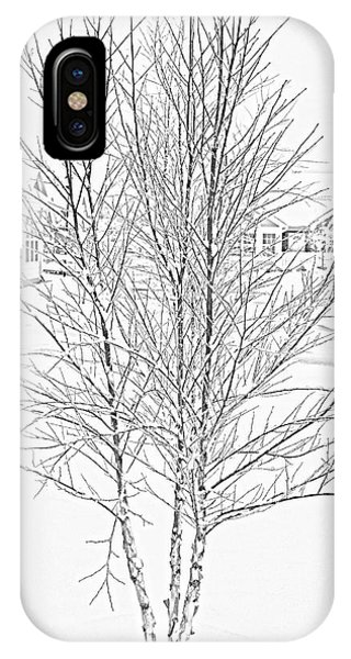 Bare Naked Tree IPhone Case