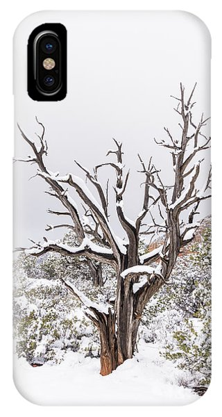 Bark And White IPhone Case