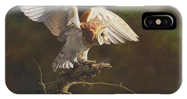 IPhone Case featuring the painting Barn Owl by Alan M Hunt