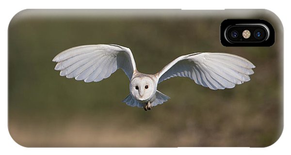 Barn Owl Approaching IPhone Case