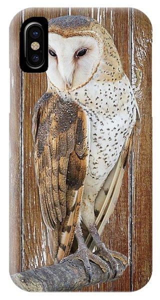 Barn Owl Artistic Portrait IPhone Case