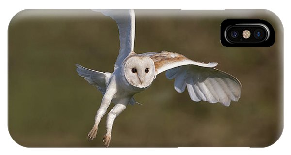 Barn Owl Cornering IPhone Case
