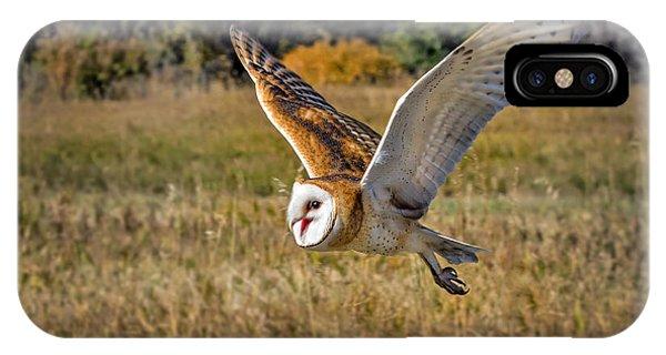 Barn Owl Flight 6 IPhone Case