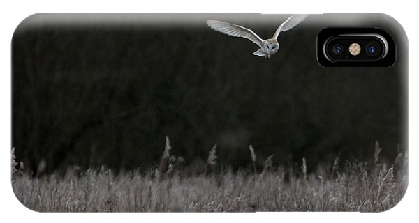 Barn Owl Hunting At Dusk IPhone Case