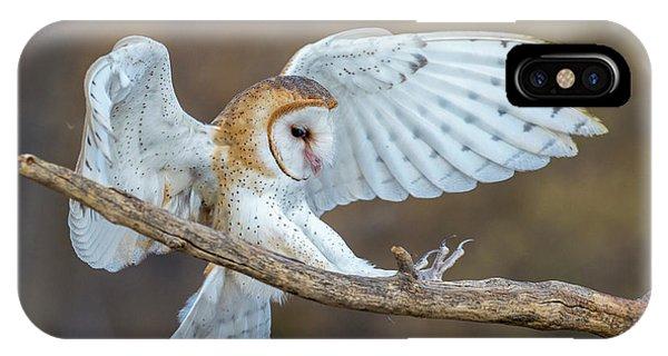 Barn Owl In Flight IPhone Case