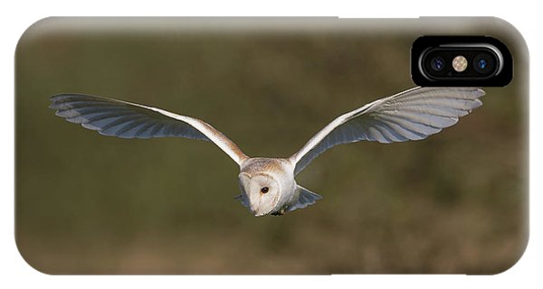 Barn Owl Quartering IPhone Case