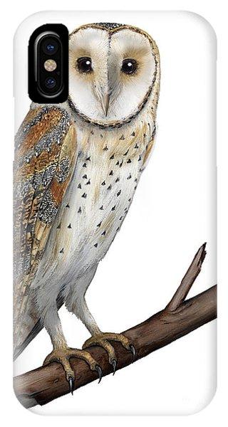 Barn Owl Screech Owl Tyto Alba - Effraie Des Clochers- Lechuza Comun- Tornuggla - Nationalpark Eifel IPhone Case
