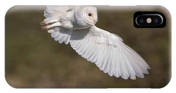 Barn Owl Wings IPhone Case