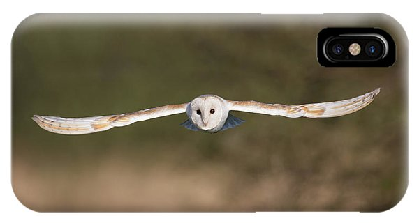 Barn Owl Wingspan IPhone Case