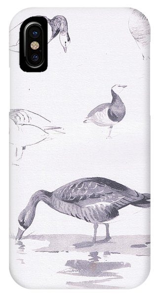 Barnacle And White Fronted Geese IPhone Case
