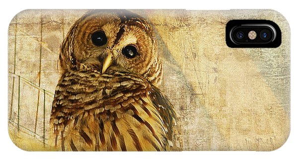 Bar iPhone Case - Barred Owl by Lois Bryan