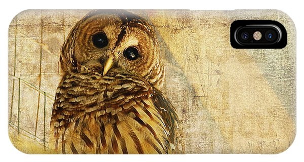 Eyes iPhone Case - Barred Owl by Lois Bryan