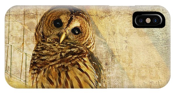 Brown iPhone Case - Barred Owl by Lois Bryan