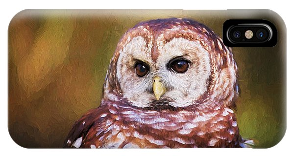 Barred Owl Portrait IPhone Case