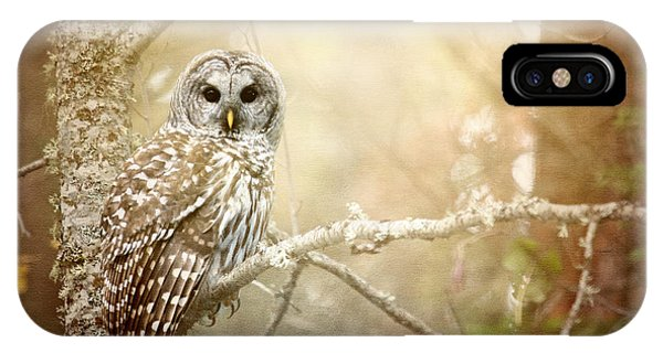 Barred Owl - Woodland Fellow IPhone Case