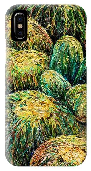 Barrel Cactus #2 IPhone Case