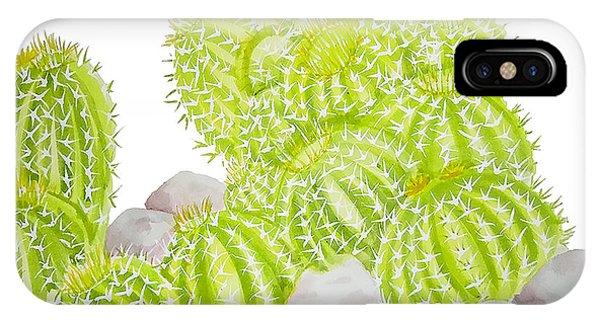 Cactus iPhone Case - Barrel Cactus by Roleen Senic