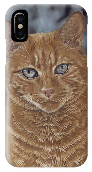 Barry The Cat IPhone Case