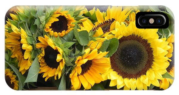 Basket Of Sunflowers IPhone Case