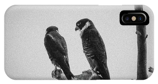 Bat Falcon In Black And White IPhone Case
