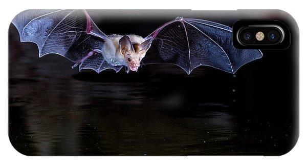 Bat Flying Over Pond IPhone Case