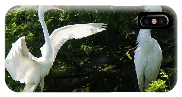 Battle Of The Egrets IPhone Case