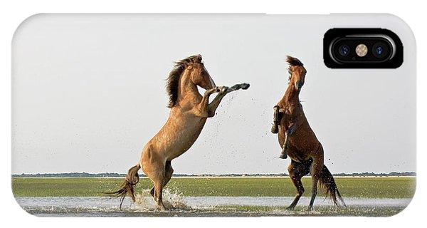 Battling Mustangs IPhone Case