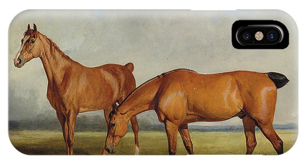 Bay Hunter And Chestnut Mare In A Field IPhone Case