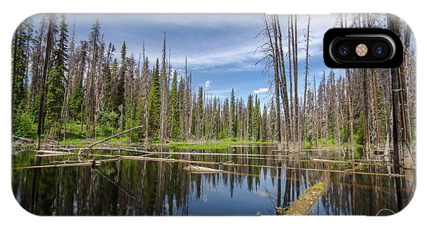 Bc Forest Lake IPhone Case