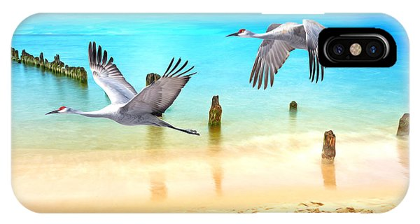 Sandhill Crane iPhone Case - Beach Beauties by Laura D Young