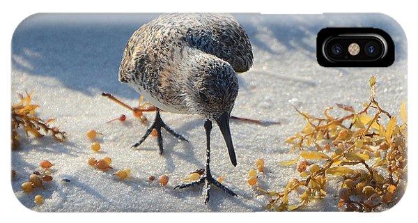 Beach Combing IPhone Case