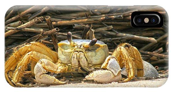 Beach Crab IPhone Case