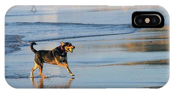 Beach Dog Playing Fetch IPhone Case